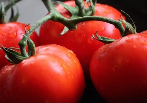 tomates_gombotz_Grander01